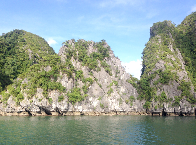 A Wildlife Cruise from Cat Ba Island